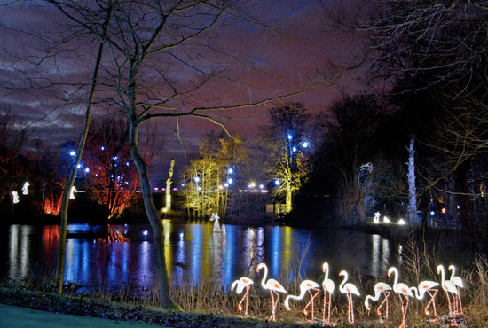 Stockeld park lake at night with lights