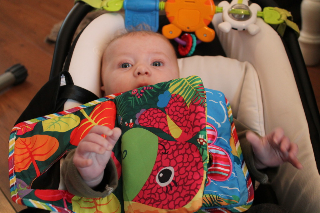 Lamaze by Tomy Toys Review