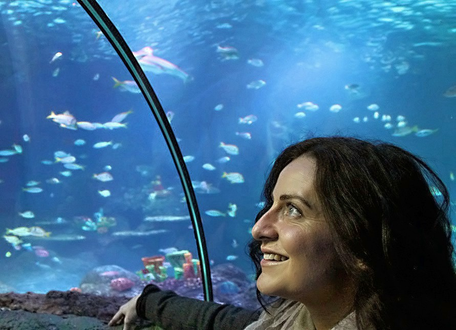 Places to go with Kids: Sea Life Aquarium Manchester