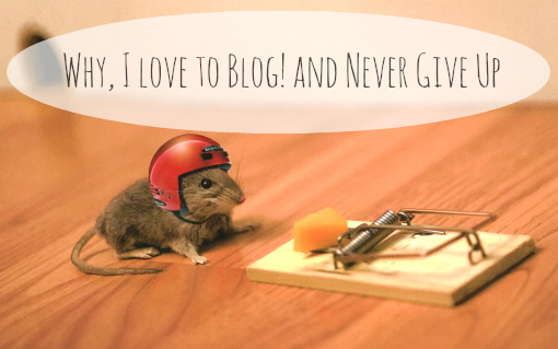 why,I love to blog