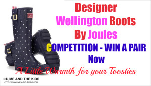 Wellington Boots By Designer Joules + Giveaway