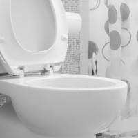 Home Decor Bathroom Gadgets vs. Traditional Appliances toilet