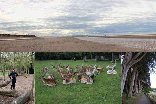 Places to go with kids| Enjoy the nature | National Trust