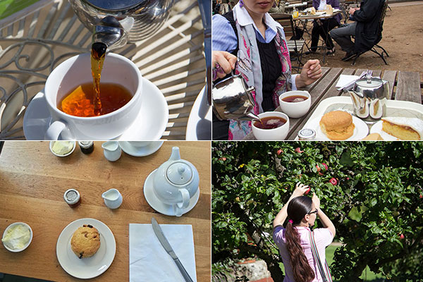 Places to go with the kids | Have tea | National Trust