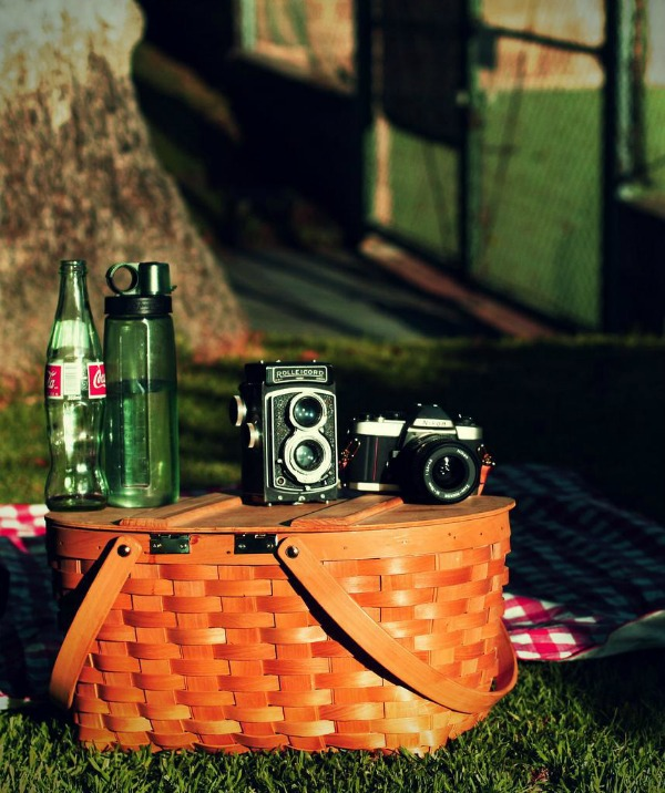 Summer Picnicking: The Essentials!