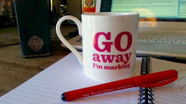 Go Away I'm Marking Bone China Mug