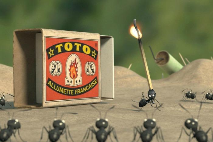 MINISCULE - Ants