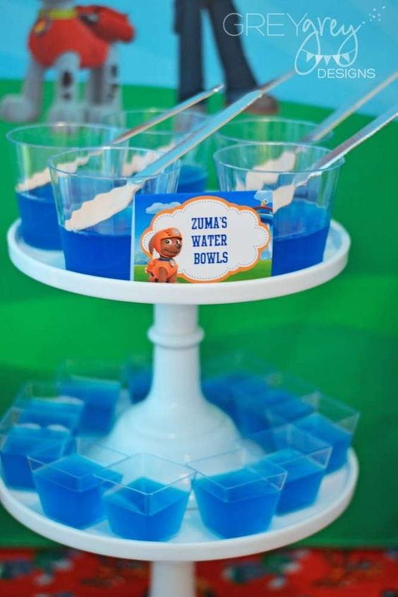 21 Paw Patrol Birthday Party Ideas - Zumas Water Bowls