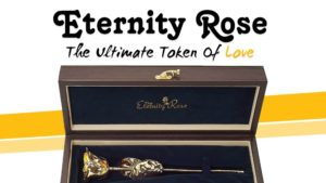 Eternity Rose The Ultimate Token of Love